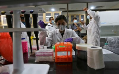 Made in India virus kits boost testing, and local industry